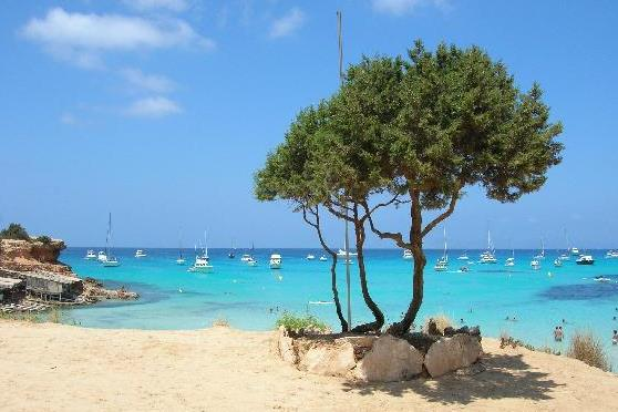 FORMENTERA ISLAND TOUR BY BUS - 76 €